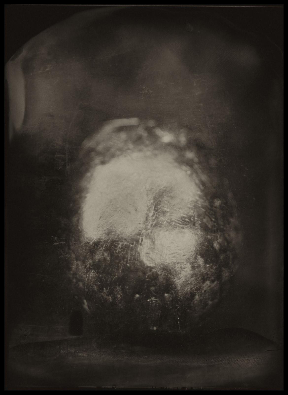 Skulls - Mokry Kolodion - Srteet Collodion Art